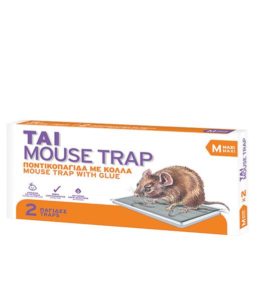 TAI_MOUSE-TRAP-MAXI_b